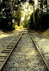 Los trenes de seguimiento