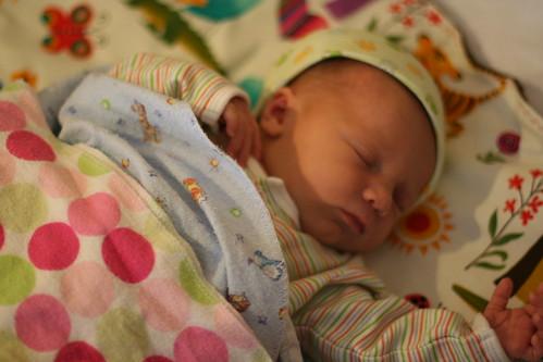 One week old Bea.