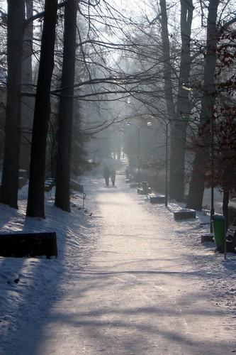Park in Szczawnica