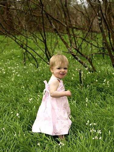 Tilly in the flower field