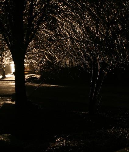 2008-12-12-ice-storm-night2