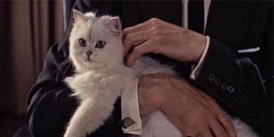 Perhaps a Bond Villain is a little too... unsophisticated?