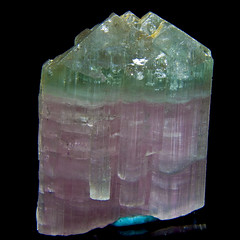 Bi-colored Elbaite (Tourmaline)