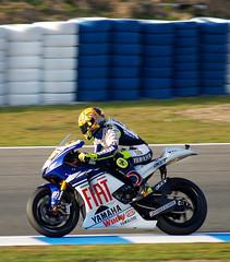 Campeón de MotoGP 2008 - Valentino Rossi en GP...