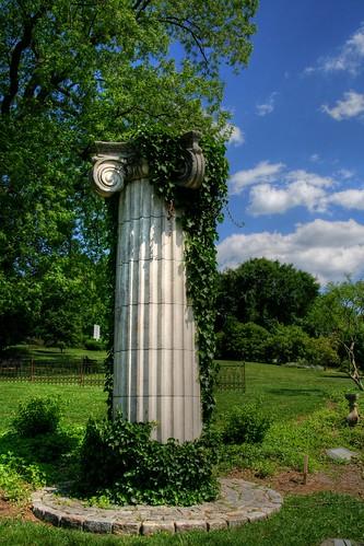 The Ivy Column