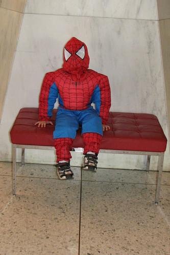 Spider-Bug!