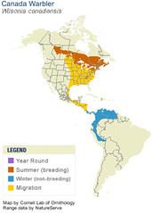 Canada Warbler Range Map