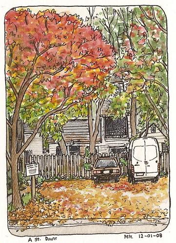 leaves everywhere