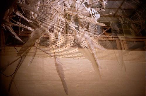 粉樂町2008-游文富‧無所不在