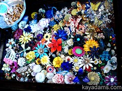 Flower Power Case at Anthill Antiques, Carytow...
