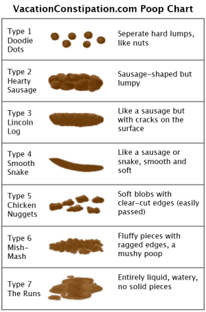 The Poop Chart – Vacation Constipation