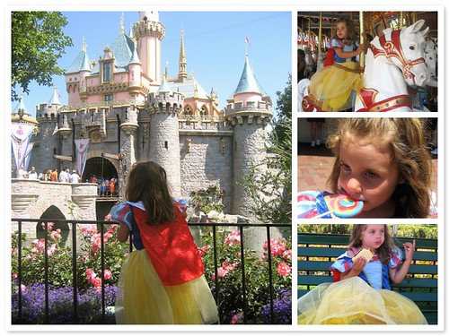 Disneyland Princess