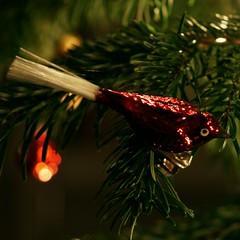 Weihnacht08 8_2008 12 21_7283