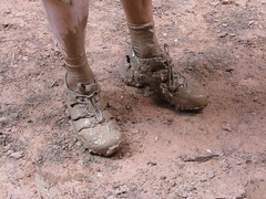 what quicksand looks like