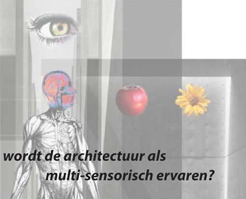 multi-sensory collage
