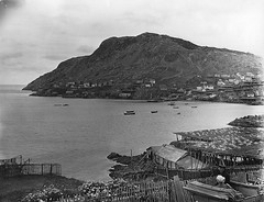 Portugal Cove, NL, 1908