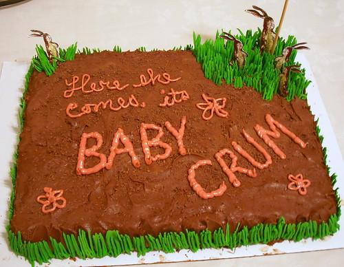 baby shower cake3