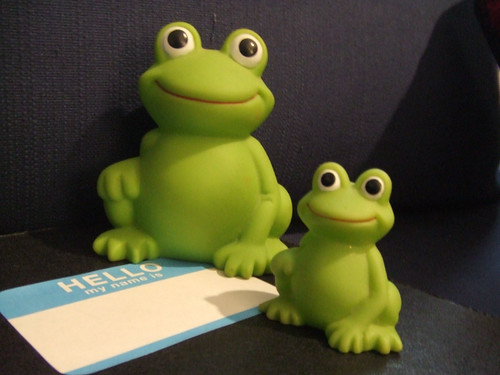 froggy duo