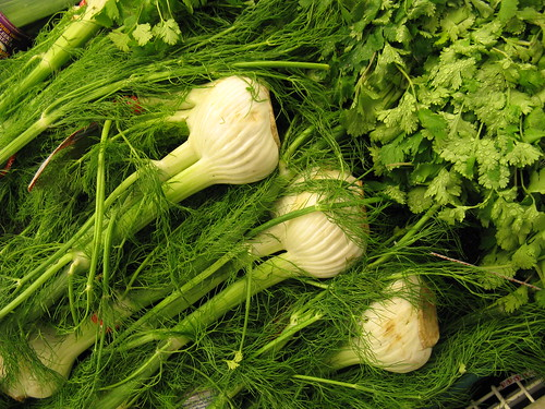 Fennel and Parsley