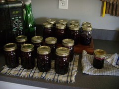 Blueberry and cherry preserves