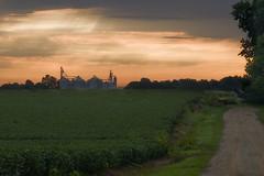 Tremont Grain Co-Op Sunrise