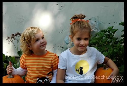 Pumpkins found!