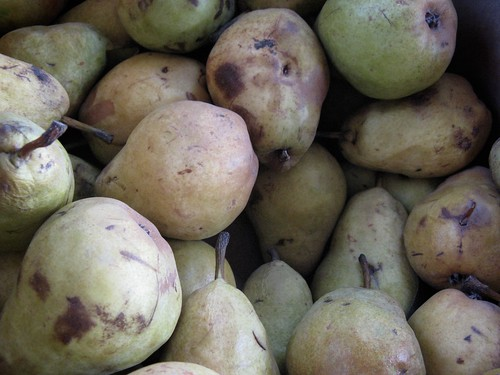 Over-ripe Pears
