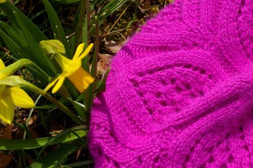 raspberry beret w daffodils