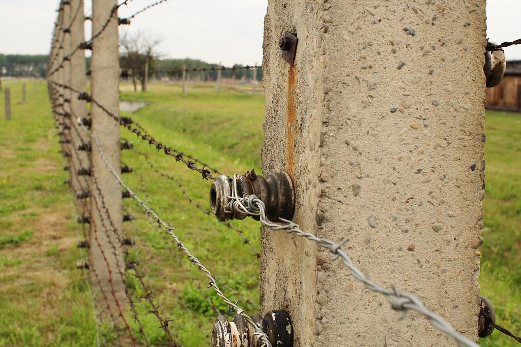 Auschwitz-Birkenau - Alambradas