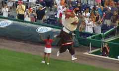 Teddy Wins unsanctioned presidents race vs. Orioles Bird at Nationals Park