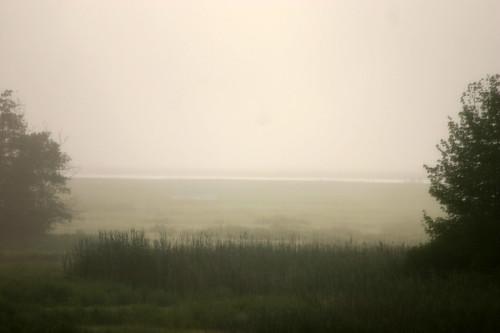 foggy ipswich morning