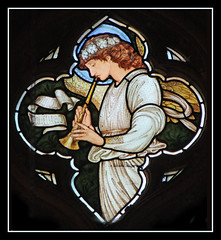 Angelic trumpeter