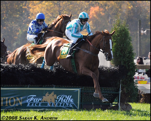 Good Night Shirt and William Dowling win the Breeders' Cup Steeplechase
