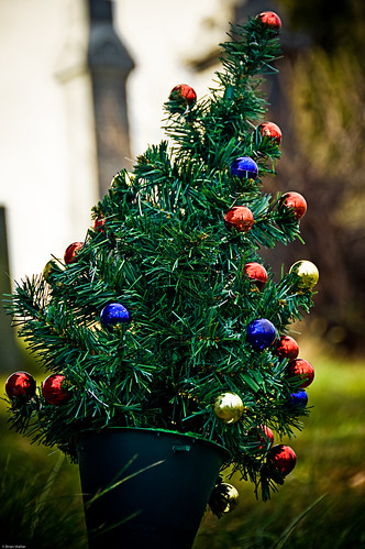 Cemetery Christmas Tree