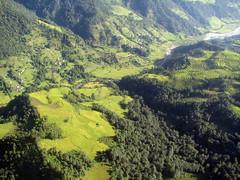 Arrozales por toda la montaña, vistos desde el avión