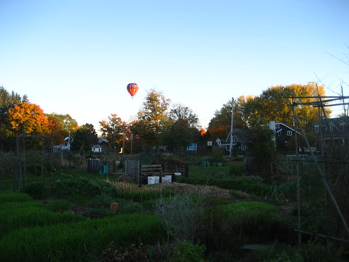 Hot air balloon above the Nton Community Gardens