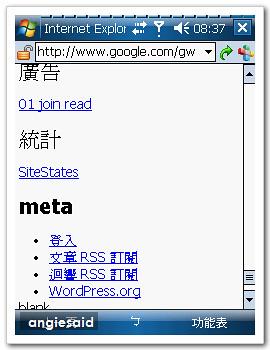 google-angie-05.jpg