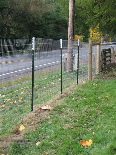 New Fence1