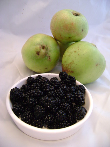 Scrumped Apples and Blackberries