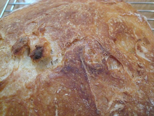 The bread has a dark, crispy crust and a light, airy crumb