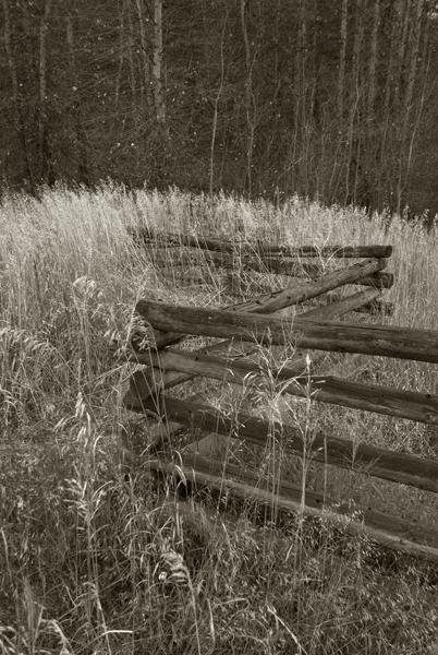 favorite fence