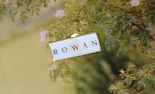 Rowan pin