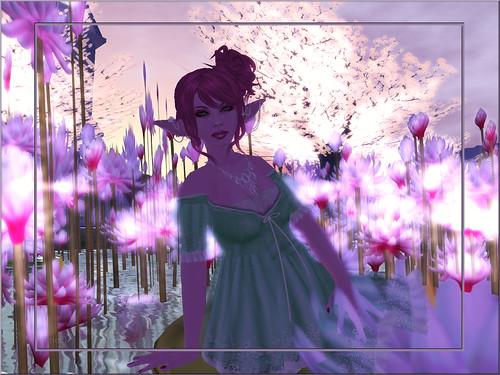 7-7 Blog 2