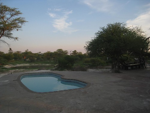 The watering hole and pool at Elephant Sands
