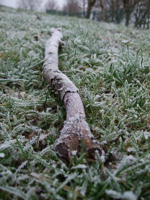 frosty stick
