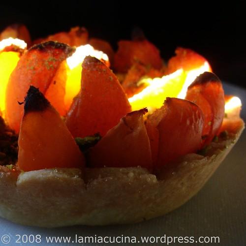 Lodernde Aprikosen im letzten Sonnenstrahl