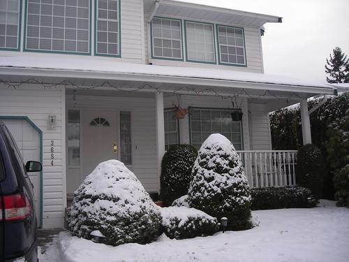 snow 020