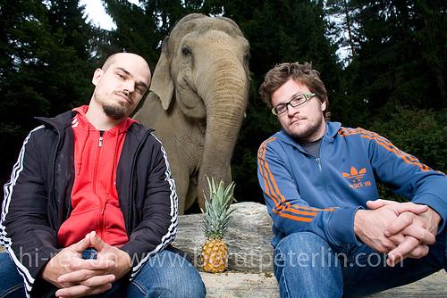 slon in sadež foto borut peterlin 20080916_7354