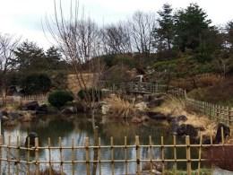 道の駅豊栄内の公園(池)