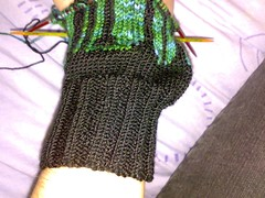 Winter Twilight Mitts